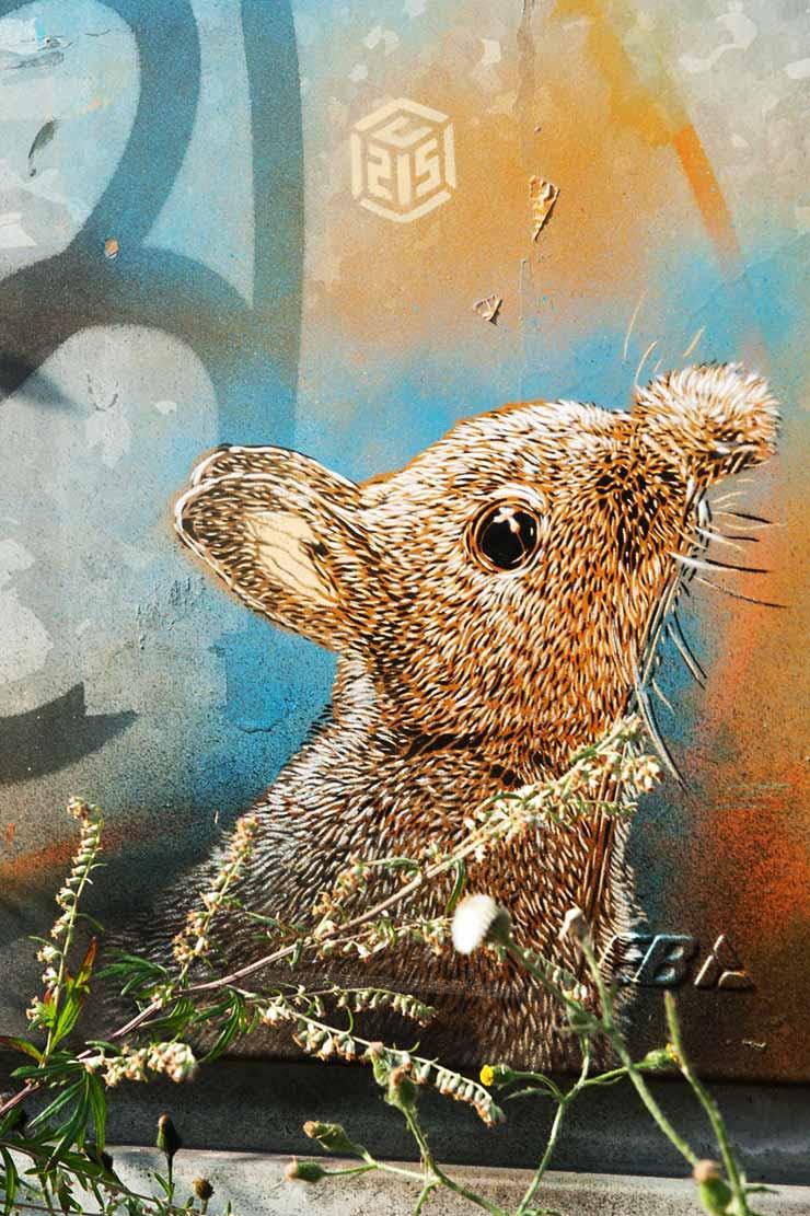 brooklyn-street-art-C215-martha-cooper-nuart-2013-web-1