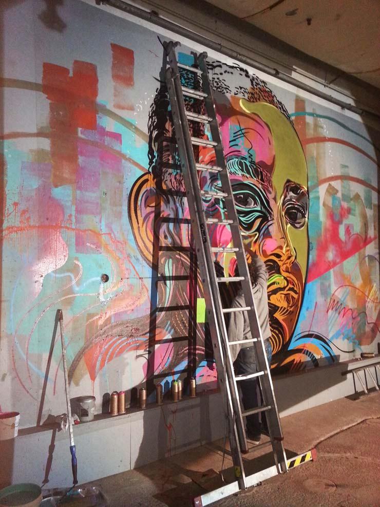 brooklyn-street-art-c215-gabija-grusaite-nuart-2013-web
