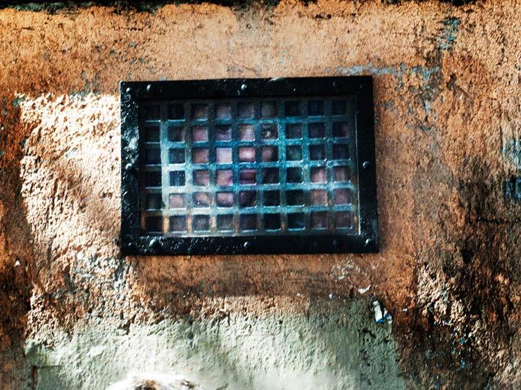 brooklyn-street-art-dan-witz-giorgio-coen-cagli-rome-09-13-web-3