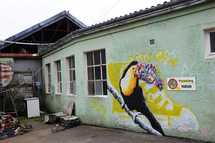 brooklyn-street-art-martin-whatson-martha-cooper-nuart-2013-web-5
