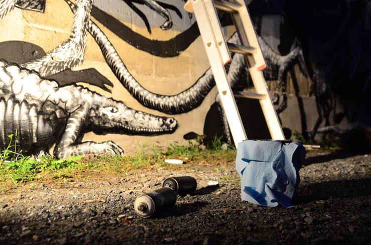 brooklyn-street-art-phlegm-bob-anderson-albany-09-13-web-5
