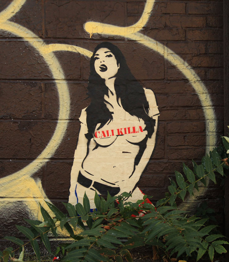 brooklyn-street-art-cali-killa-jaime-rojo-10-13-13-web