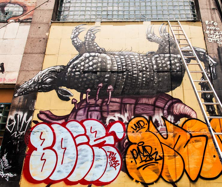 brooklyn-street-art-tiburon704-navajas-shente-mujam-Roberto-Yuichi- Shimizu-mexico-city-10-13-web-1