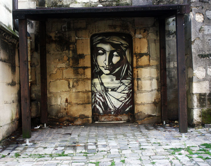 brooklyn-street-art-c215-spencer-elzey-vitry-france-10-13-virgin-mary-web