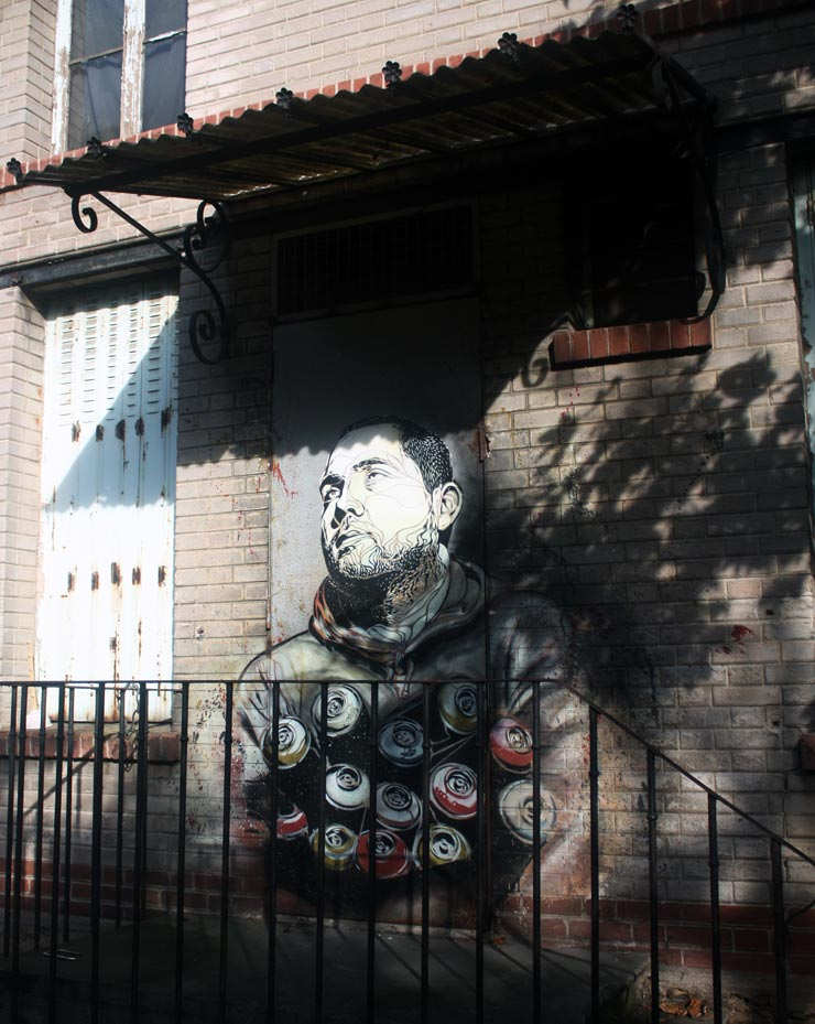 brooklyn-street-art-c215-spencer-elzey-vitry-france-10-13-web-5