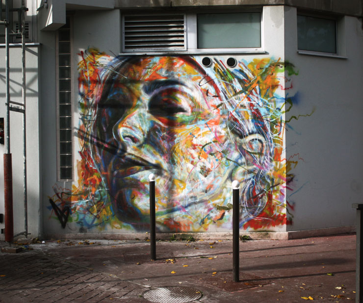 brooklyn-street-art-david-walker-spencer-elzey-vitry-france-10-13-web