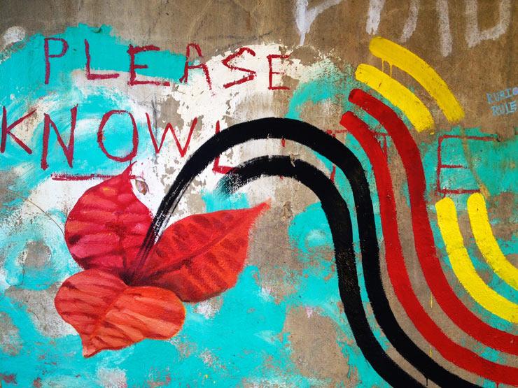 brooklyn-street-art-nanook-overunder-reno-10-13-web-11