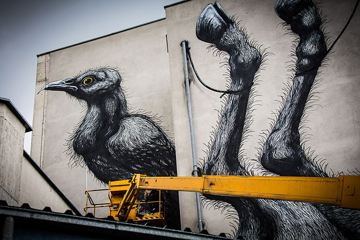 brooklyn-street-art-roa-2013-LINZ-Christian-Boehm-web-3
