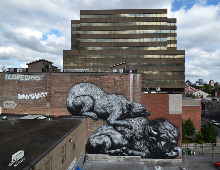 brooklyn-street-art-roa-2013-montreal-web-2