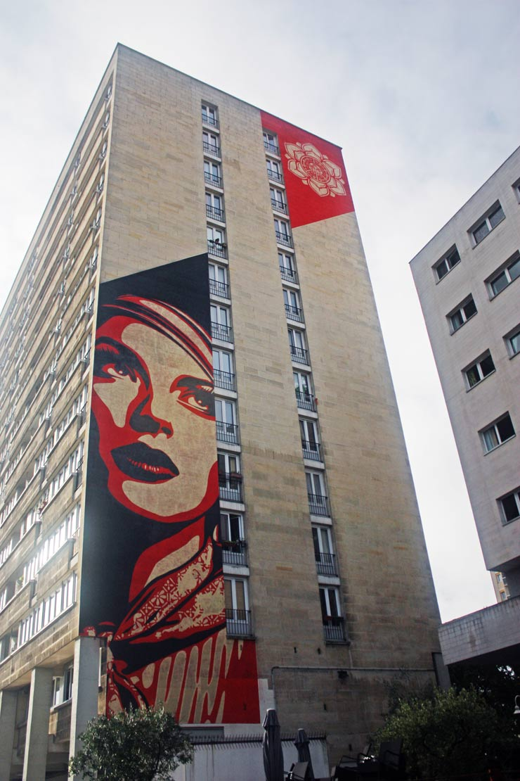 brooklyn-street-art-shepard-fairey-spencer-elzey-paris-france-10-13-web