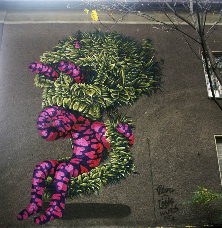 brooklyn-street-art-vidan-the-weird-spencer-elzey-berlin-10-13-web