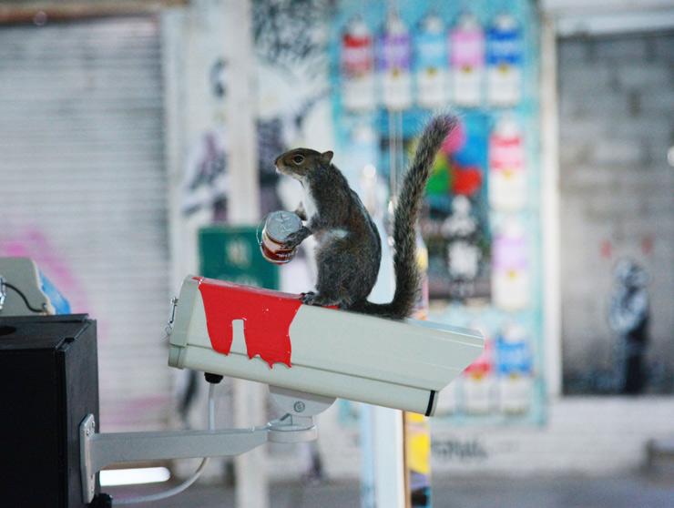 brooklyn-street-art-rene-gagnon-jaime-rojo-01-14-web-2