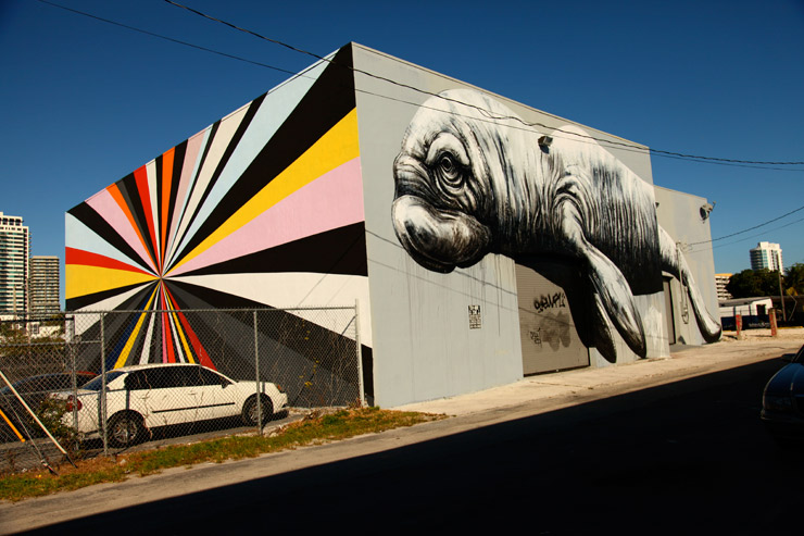 brooklyn-street-art-kenton-parker-roa-jaime-rojo-02-14-web