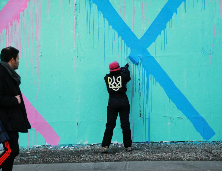 brooklyn-street-art-maya-hayuk-jaime-rojo-02-09-14-web-4