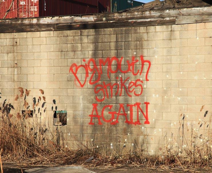 brooklyn-street-art-artist-unknown-jaime-rojo-new-jersey-11-12-web-10