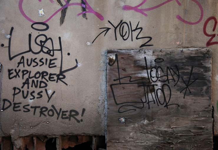 brooklyn-street-art-lush-jaime-rojo-new-jersey-11-12-web-9