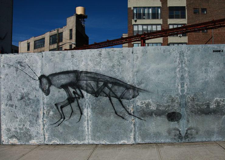 brooklyn-street-art-shok1-jaime-rojo-03-14-web-5