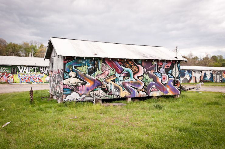 brooklyn-street-art-fowl-geoff-hargadon-ashville-04-14-web