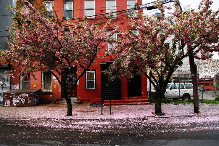 brooklyn-street-art-jaime-rojo-05-11-14-web