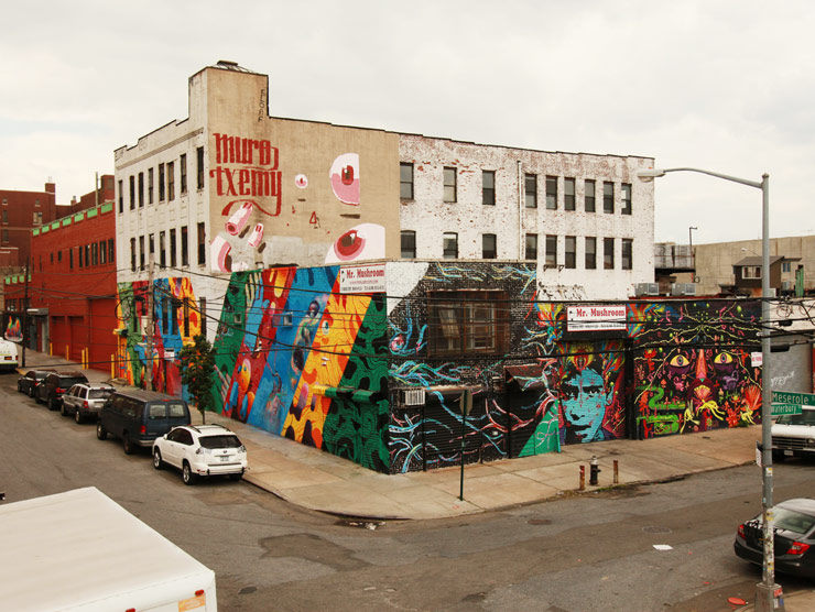 brooklyn-street-art-muro-txemy-stinkfish-meca-done-jaime-rojo-06-01-14-web