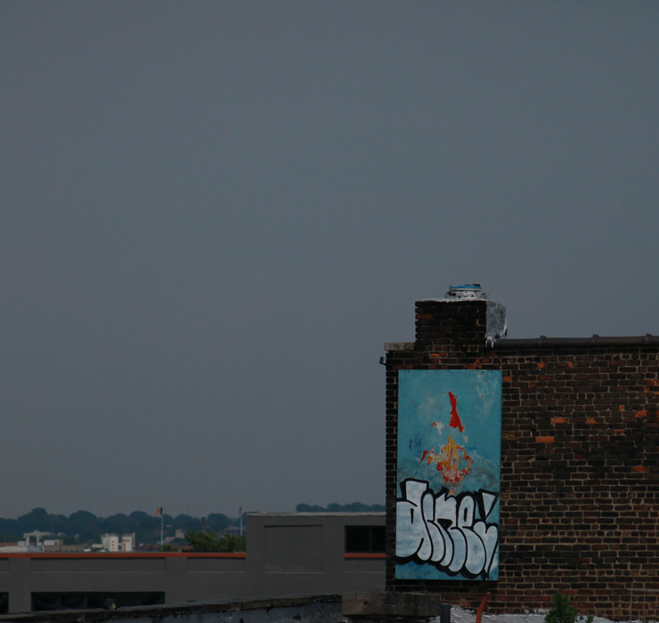 brooklyn-street-art-acme-jaime-rojo-06-22-14-web