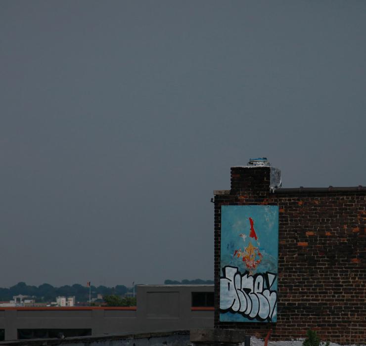 brooklyn-street-art-acme-jaime-rojo-06-22-14-web