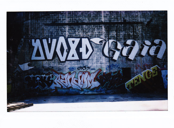 brooklyn-street-art-adam-void-polaroid-castell-photography-web-2