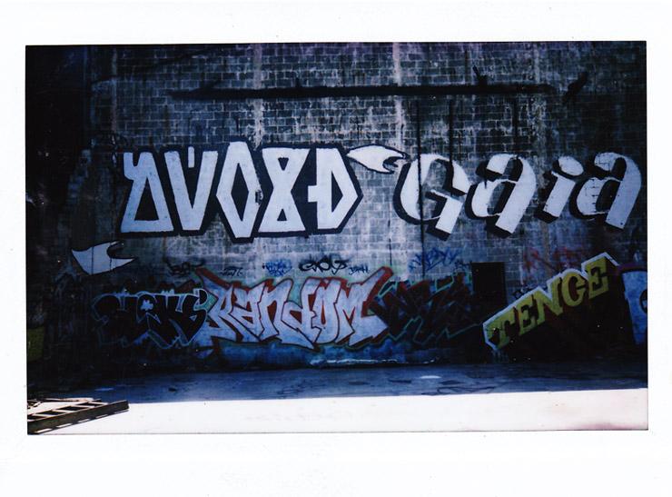 brooklyn-street-art-adam-void-polaroid-castell-photography-web-2