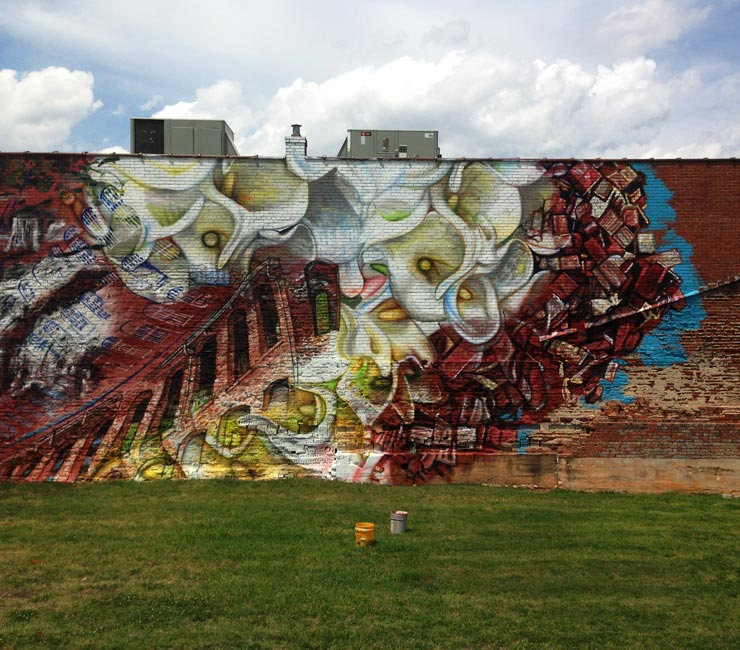 brooklyn-street-art-gaia-greenville-north-carolina-06-14-web-2