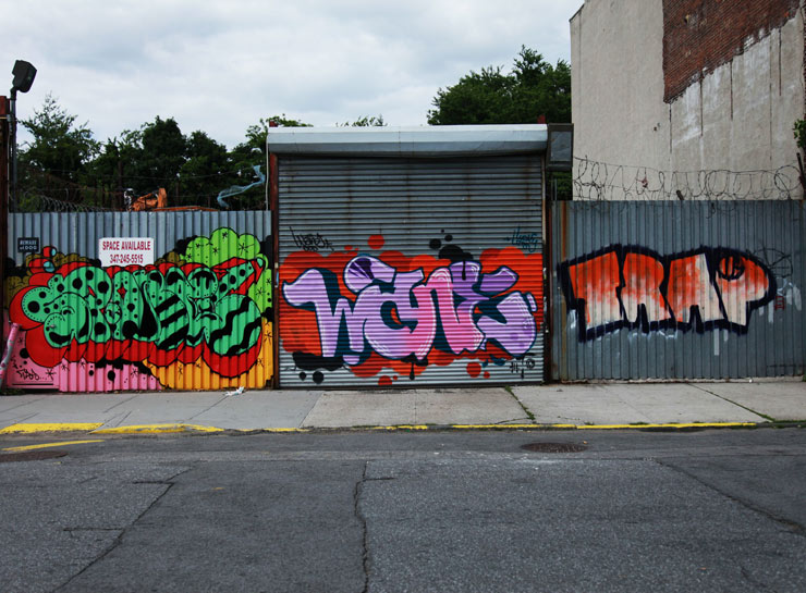 brooklyn-street-art-greg-lamarche-wane-trap-welling-court-jaime-rojo-06-2014-web