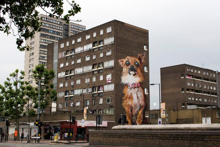 brooklyn-street-art-irony-boe-gary-hunter-london-06-22-14-web