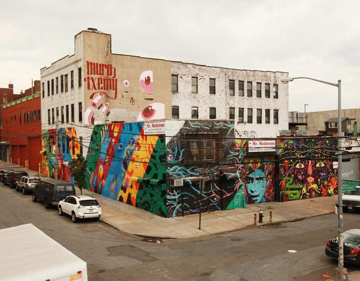 brooklyn-street-art-muro-txemy-stinkfish-meca-jaime-rojo-06-14-web