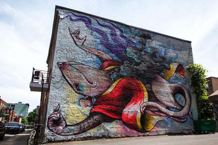 brooklyn-street-art-zema-daniel-esteban-rojas-mural-festival-montreal-06-14-web