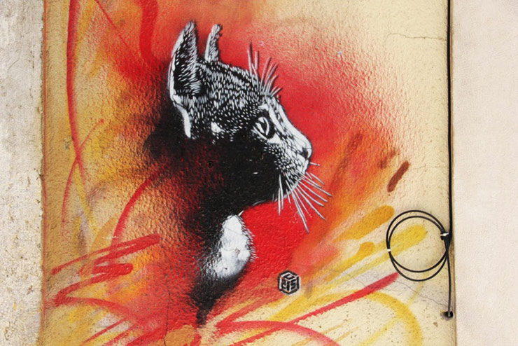 brooklyn-street-art-c215-stephen-kelley-lisbon-04-14-web-2