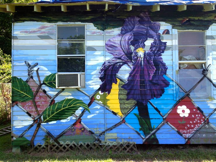 brooklyn-street-art-overunder-iris-baton-rouge-07-14-web-2