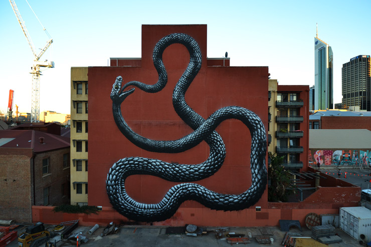 brooklyn-street-art-roa-perth-07-14-web-1