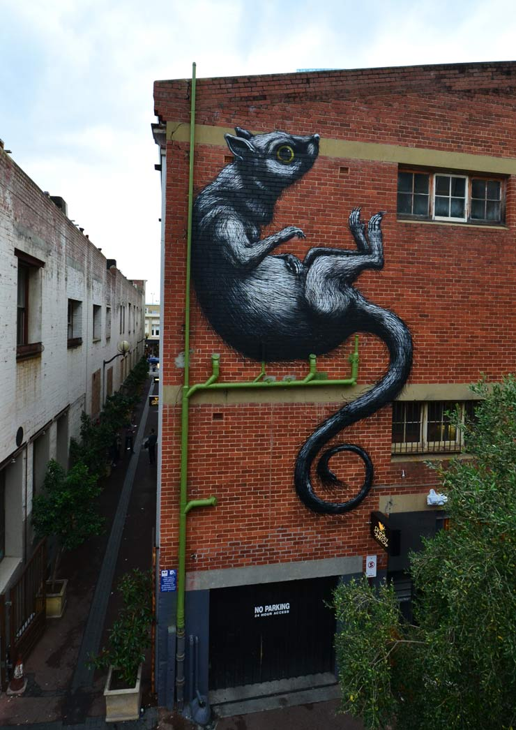 brooklyn-street-art-roa-perth-07-14-web-2