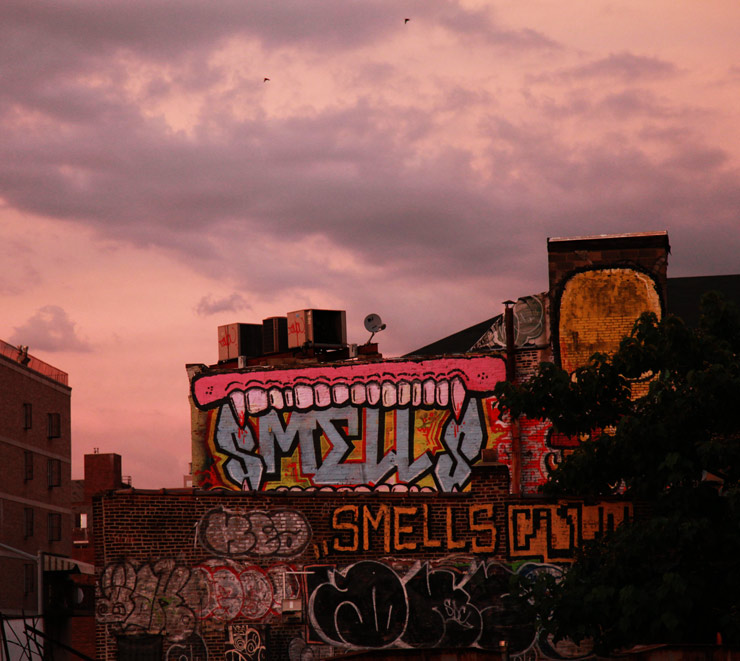 brooklyn-street-art-sweetoof-smells-cash4-ufo907-jaime-rojo-07-20-14-web