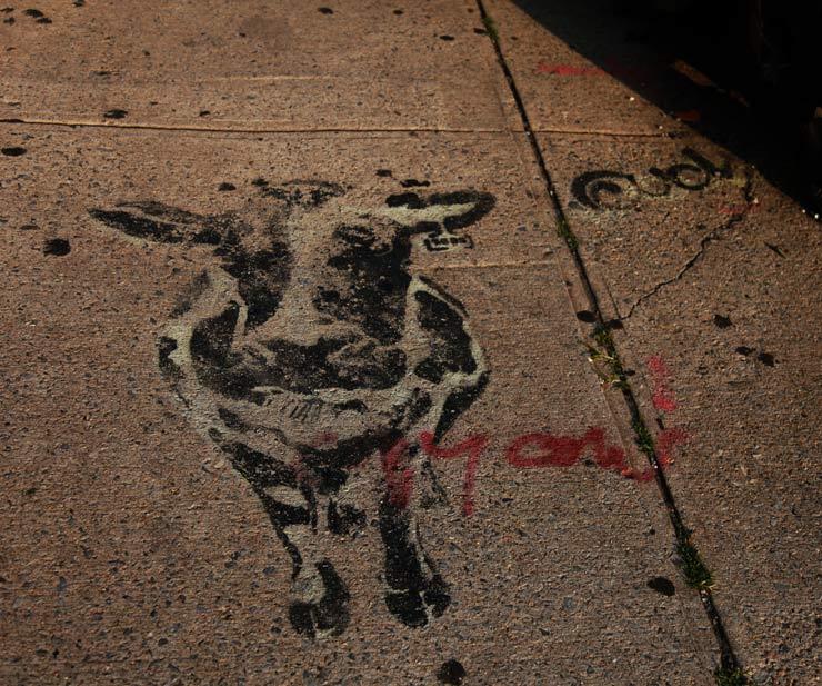 brooklyn-street-art-ud-jaime-rojo-07-13-14-web