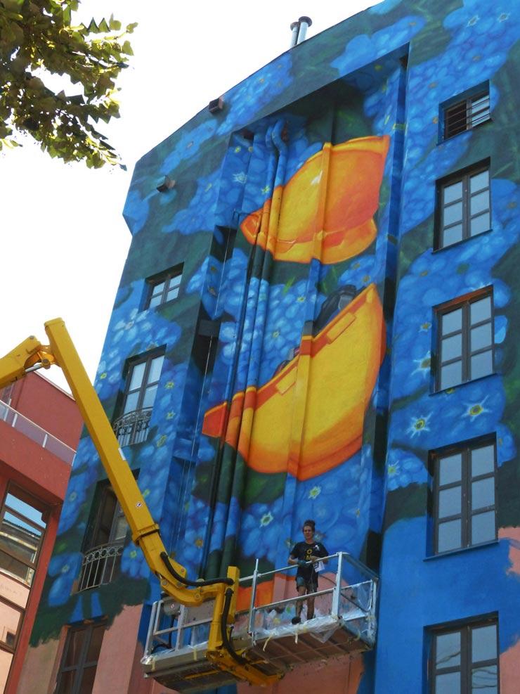 brooklyn-street-art-Cooper-gaia-istanbul-pera-08-14-web-1