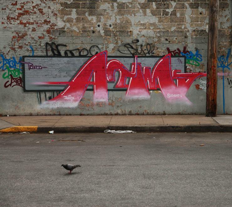 brooklyn-street-art-adam-fujita-jaime-rojo-08-03-14-web