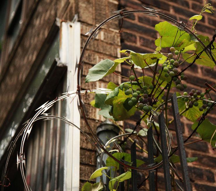 brooklyn-street-art-jaime-rojo-08-17-14-web