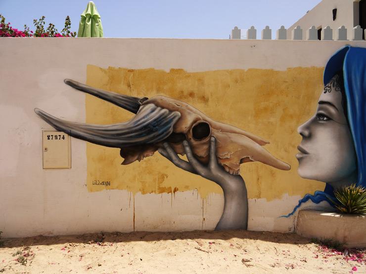 brooklyn-street-art-liliwenn-Djerbahood-Djerba-tunisia-07-14-web-3