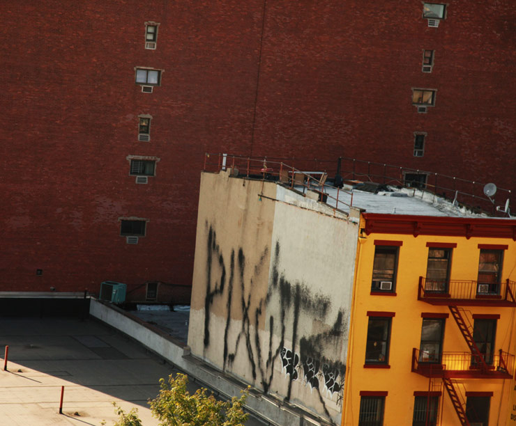 brooklyn-street-art-pixote-jaime-rojo-08-24-14-web