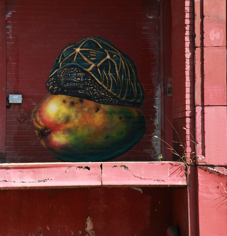 brooklyn-street-art-willow-swil-jaime-rojo-08-31-14-web-2