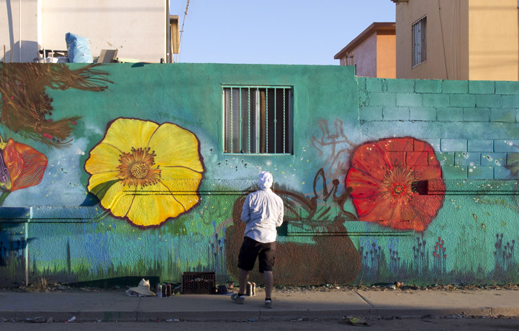 brooklyn-street-art-cropped-shente-copyright-specter-pintemos-mexico-ensenada-08-14-web
