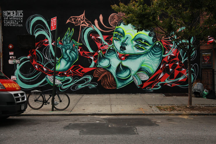 brooklyn-street-art-caratoes-jaime-rojo-10-12-14-web
