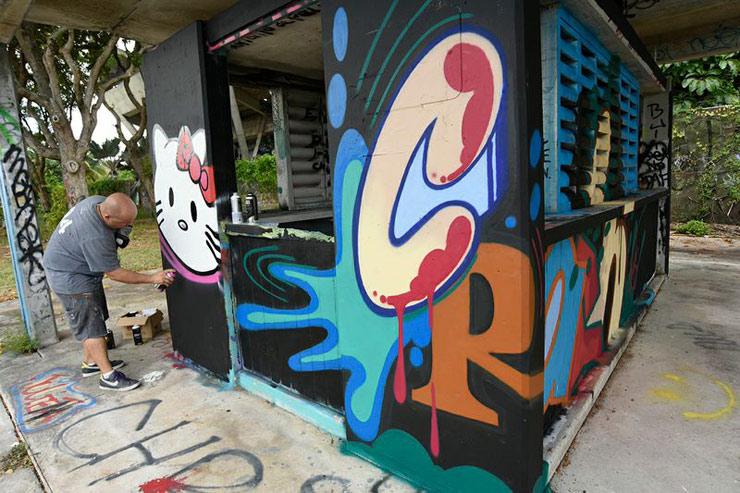 brooklyn-street-art-crash-luis-berros-martha-cooper-miami-marine-09-14-web-1