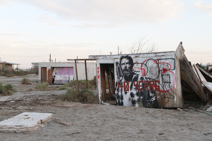 brooklyn-street-art-eddie-colla-salton-sea-09-14-web-6