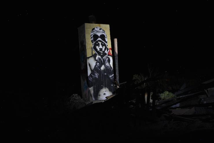 brooklyn-street-art-eddie-colla-salton-sea-09-14-web-7